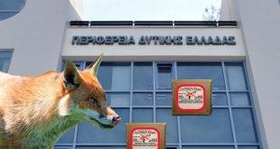 perif-dyt-ellados-fox